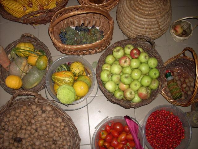 Általános Iskola Almamellék - összegyűjtött termények