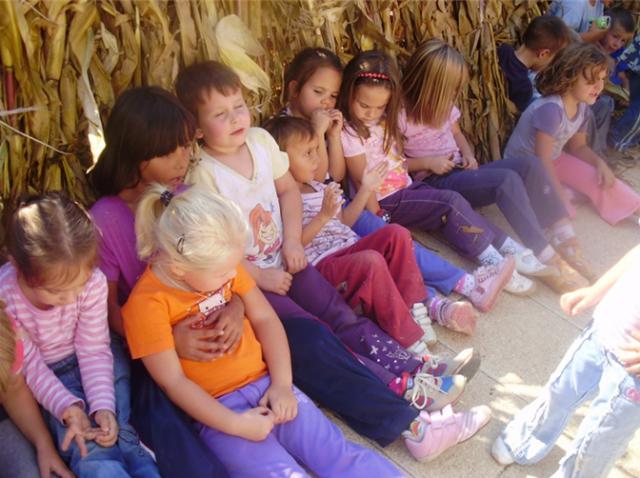 Szentlászló - Kukorica – Mais projekt 2011/12 nevelési év